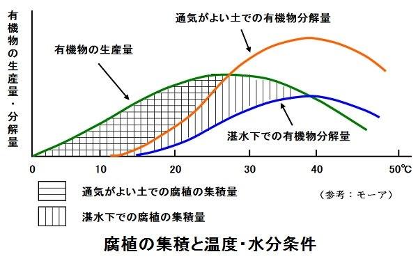 14%e8%85%90%e6%a4%8d%e8%93%84%e7%a9%8d