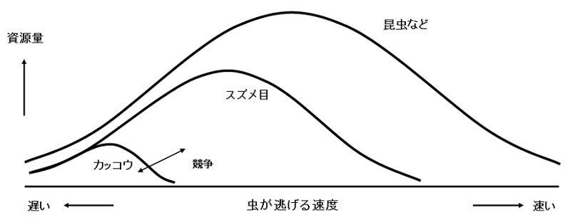 %e6%98%86%e8%99%ab%e9%80%83%e3%81%92%e3%82%8b