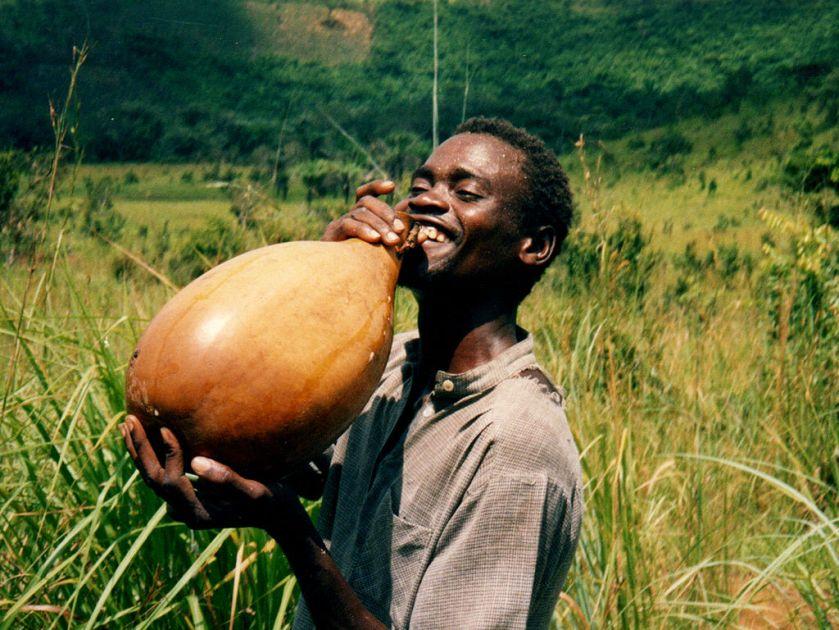 カボチャとヒョウタンの起源 Origin of pumpkin andlagenaria